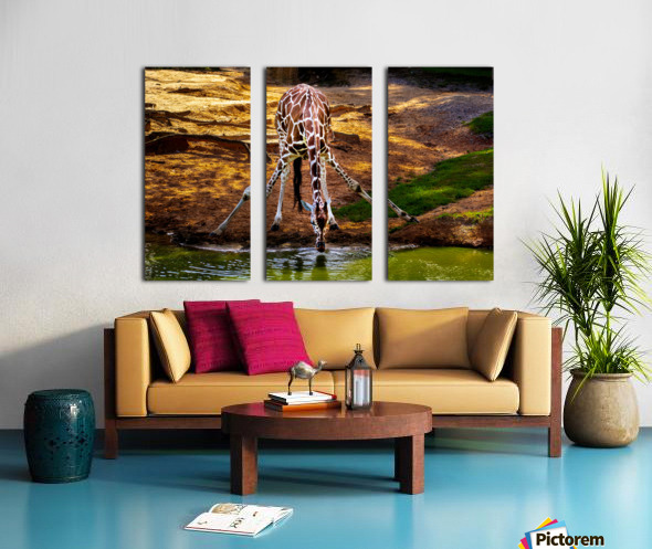 Reticulated Giraffe 2 Split Canvas print