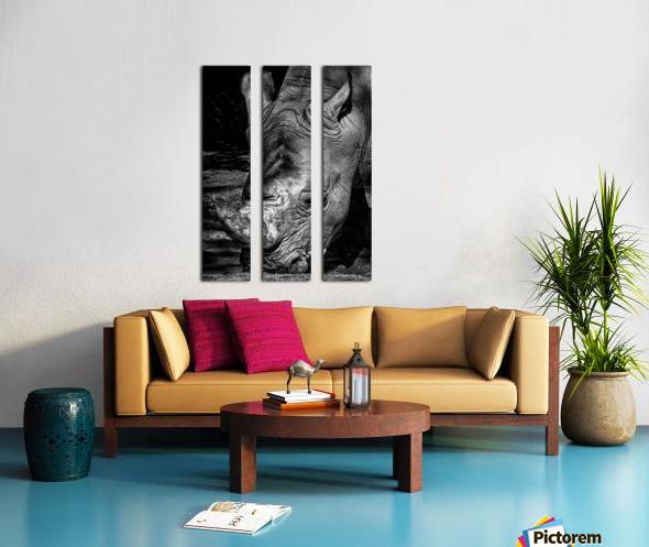 Rhinoceros Split Canvas print