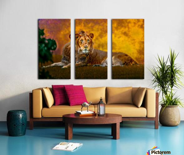 Lion Split Canvas print