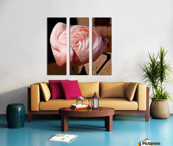 Flamingo Split Canvas print