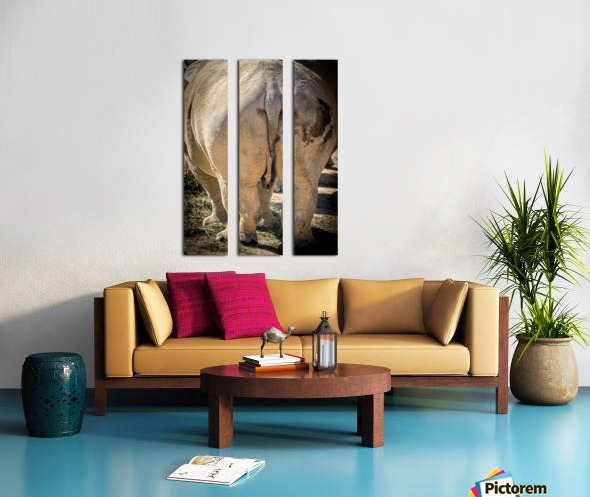 Rhinoceros 2 Split Canvas print