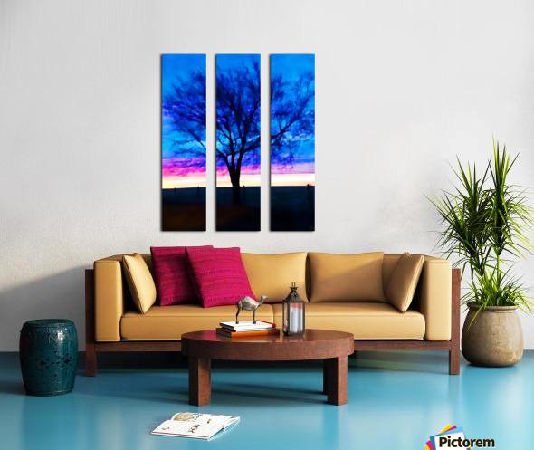 stillness Split Canvas print
