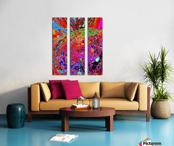 Baudi Split Canvas print