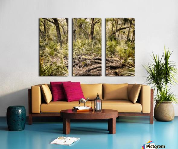 OCA 251 Split Canvas print