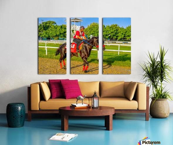 Racehorse01 Split Canvas print