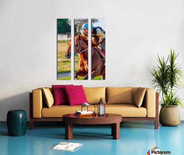 Racehorse11 Split Canvas print