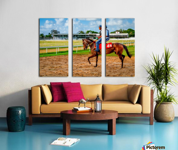 Racehorse04 Split Canvas print