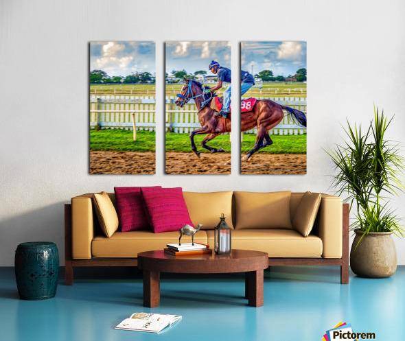Racehorse09 Split Canvas print