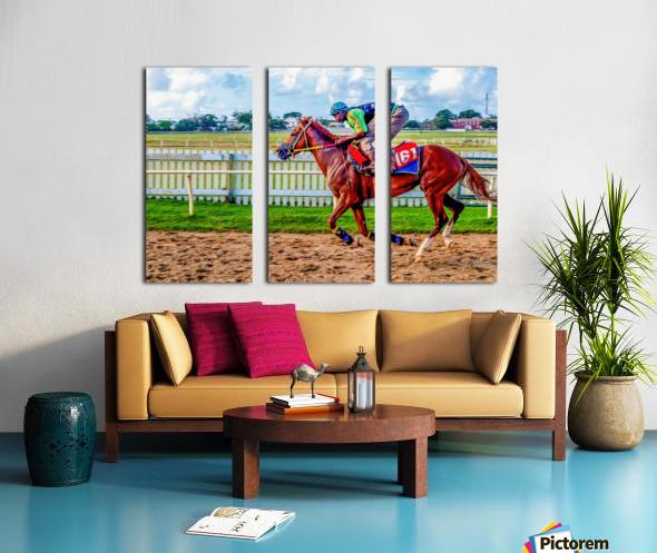 Racehorse10 Split Canvas print
