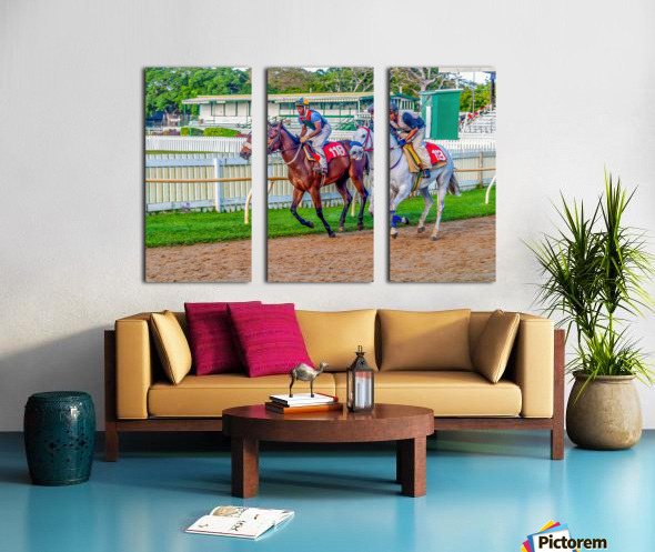 Racehorse07 Split Canvas print