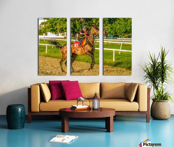 Racehorse12 Split Canvas print