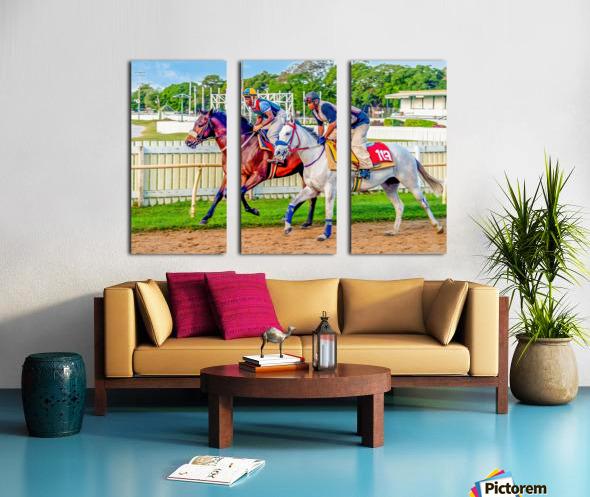 Racehorse08 Split Canvas print