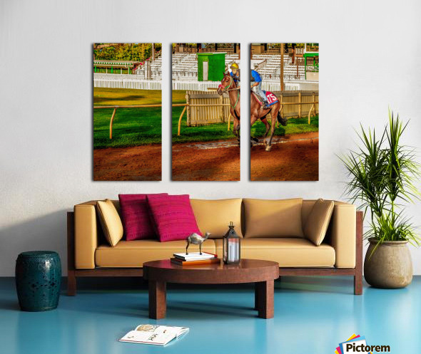 Racehorse02 Split Canvas print