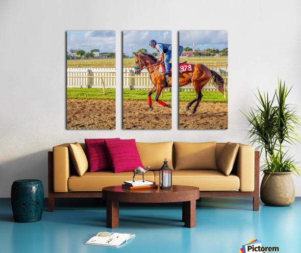 Racehorse06 Split Canvas print