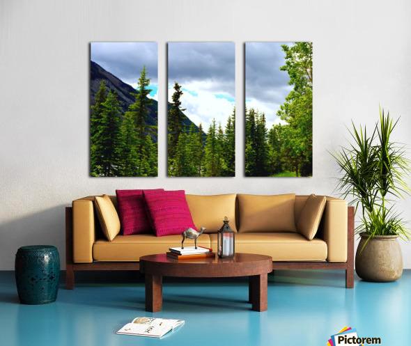 Perspective Approves Split Canvas print