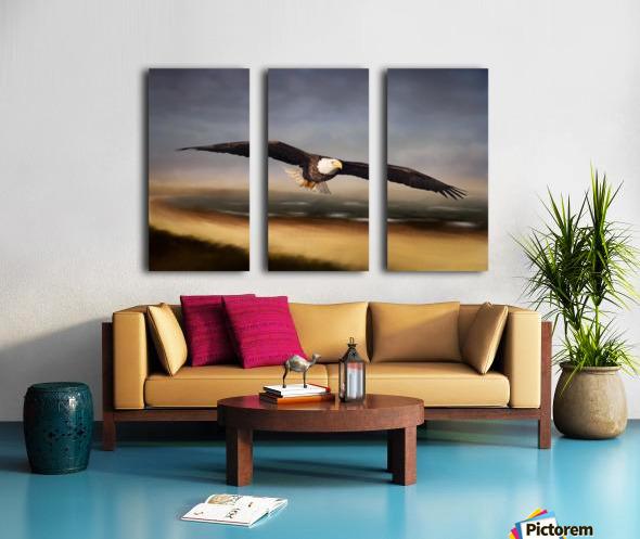 Raptor Skies Split Canvas print