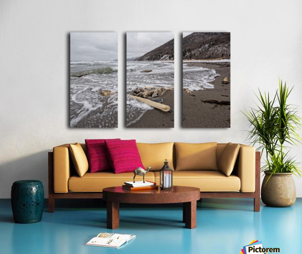 Back to the Seas Split Canvas print