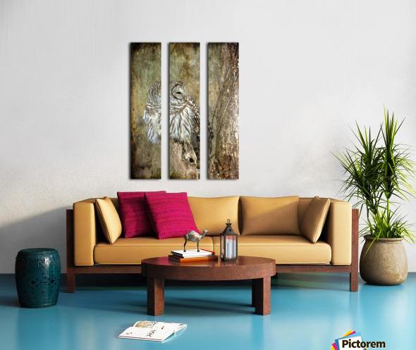 Grungy Owl Split Canvas print