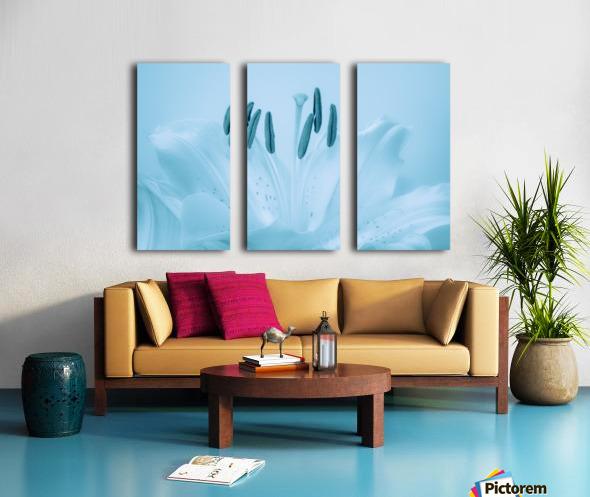 Blue Lily Split Canvas print