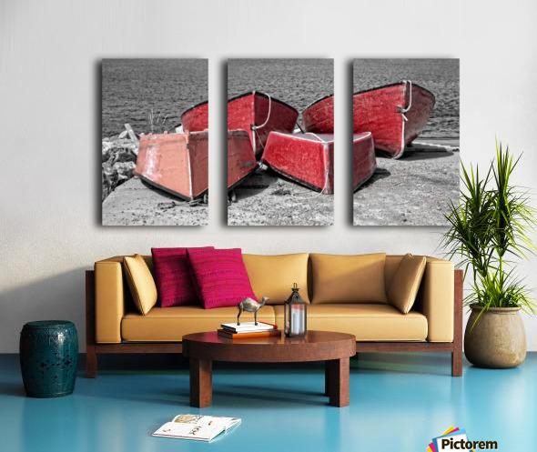 Red Dorries Split Canvas print