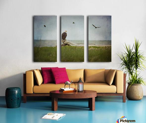 Bald Eagle on Tree Trunk Split Canvas print