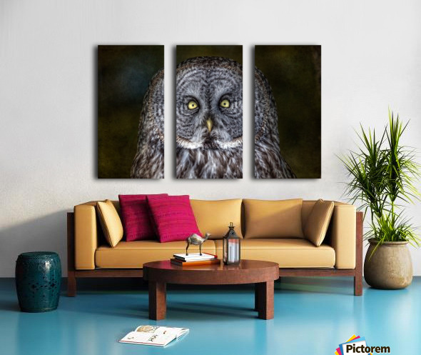 Stare Down with a Great Grey Owl Split Canvas print