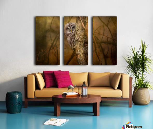 I See You Split Canvas print