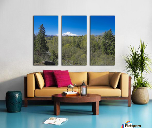 Mount Hood   Oregon Split Canvas print