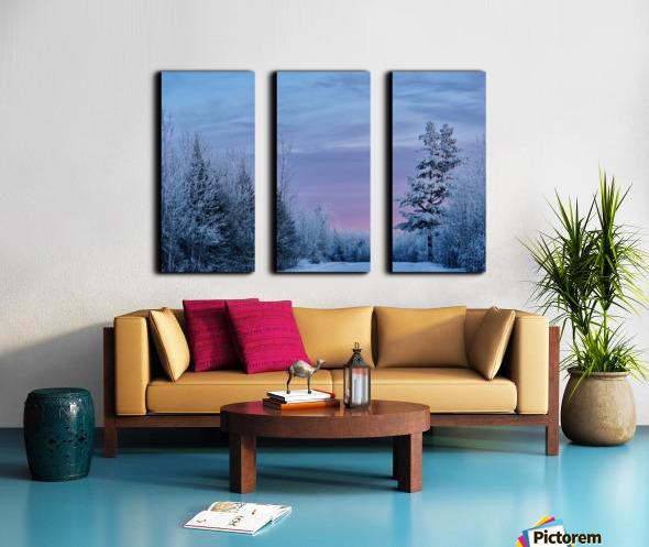 Winter Wonderland  Split Canvas print