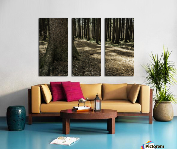 One in a Hundred Split Canvas print