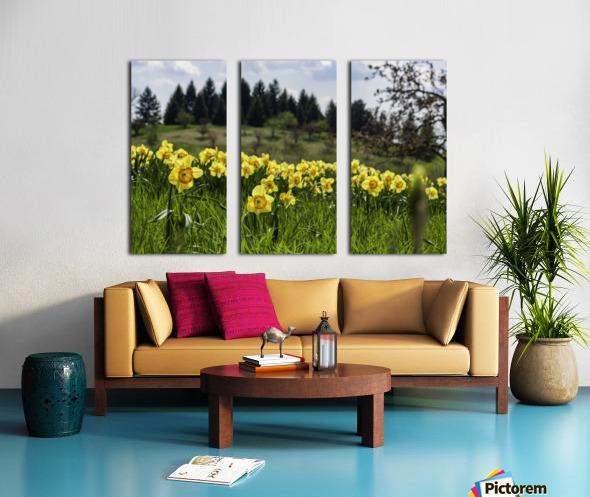 Flowers on the Hills Split Canvas print