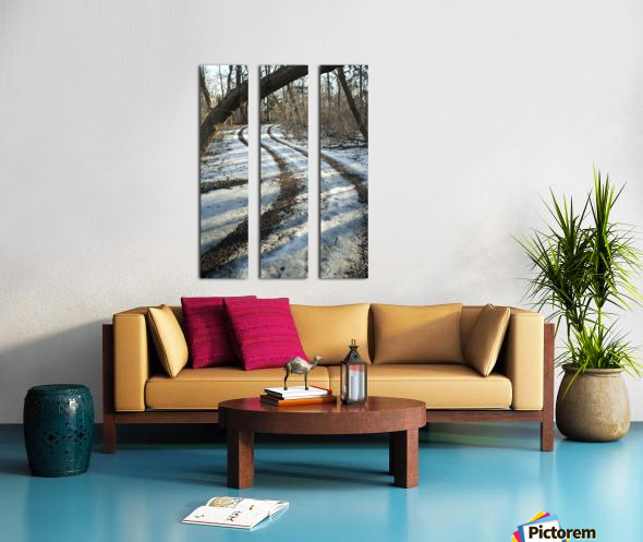 Snowy Trails Split Canvas print