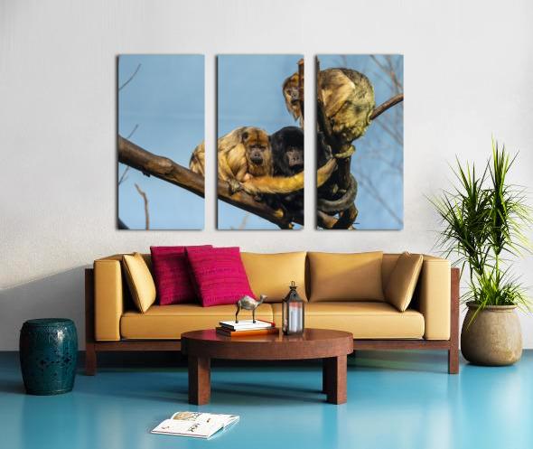 Eyes in the Trees  Howler Monkey  Split Canvas print
