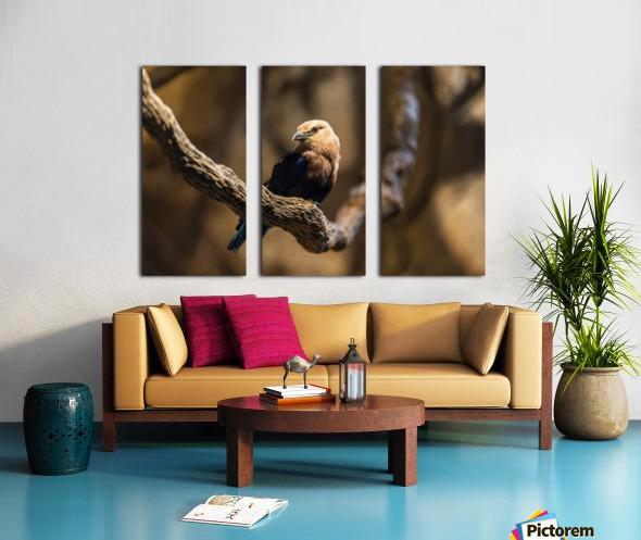 Perfect Pose  Bird  Split Canvas print