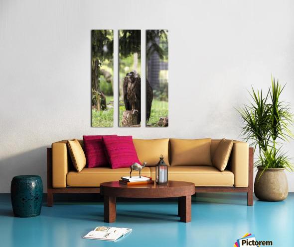 Buzzard Split Canvas print