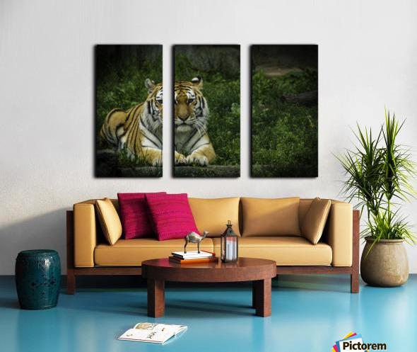 Next Strike  Tiger  Split Canvas print