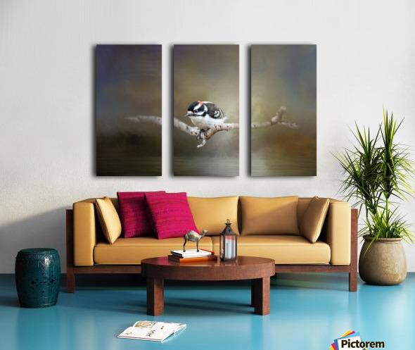 Mr Downy Split Canvas print