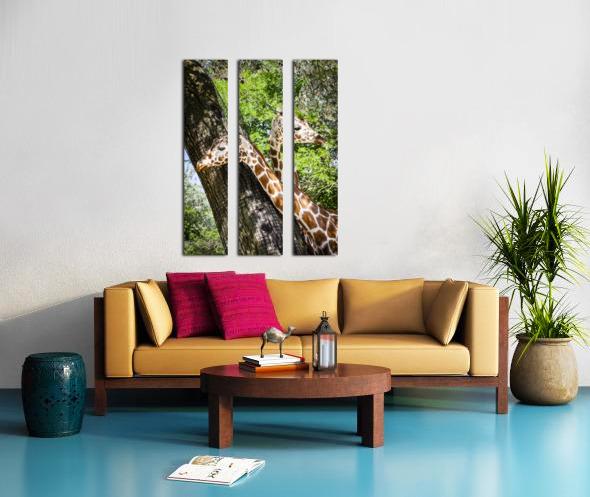 Spots Under Shadows  Giraffes  Split Canvas print
