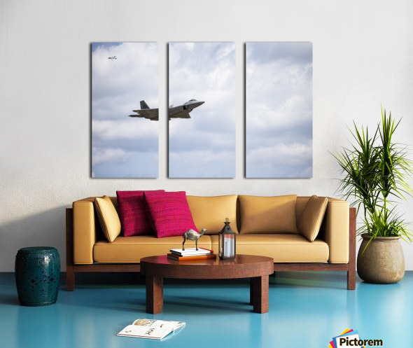 Military Pass Split Canvas print