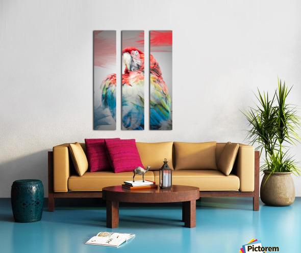 Perroquet  Split Canvas print