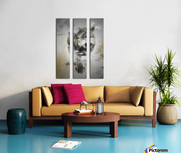 Cheval Split Canvas print