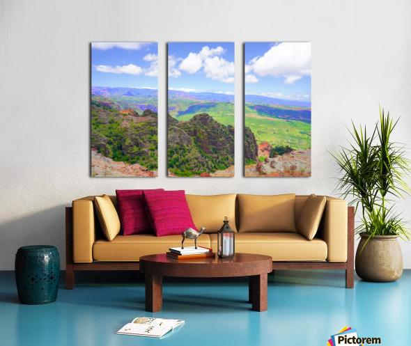 Waimea Canyon Area in the Puu Ka Pele Forest Reserve on the Island of Kauai Hawaii Split Canvas print