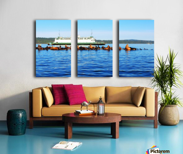 Sea Lions Hanging Out Split Canvas print