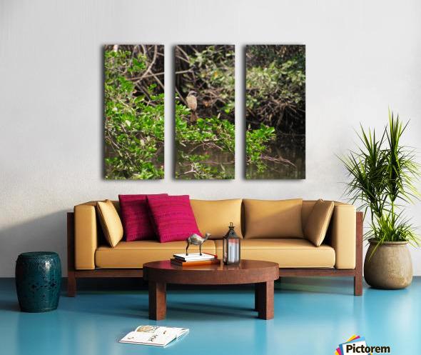 Tropical Bird in Tree Split Canvas print