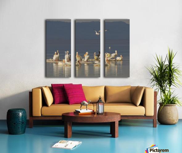 Pelicans of the Salton Sea Split Canvas print