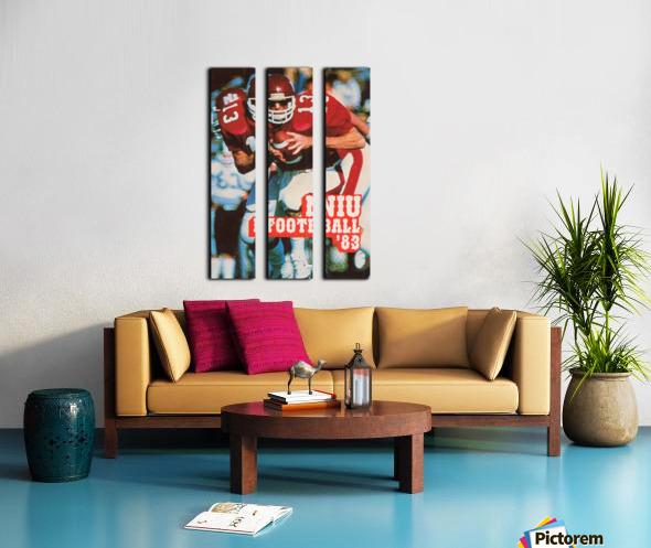 1983 Northern Illinois Huskies Football Poster Split Canvas print