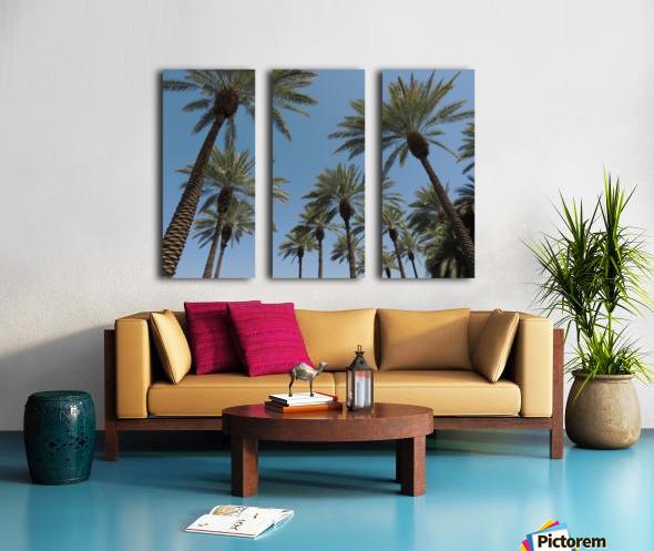 Date Garden Oasis Split Canvas print