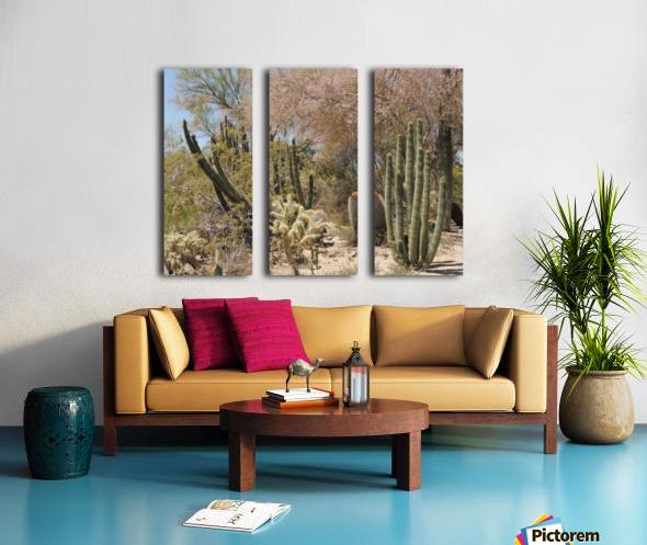 Cactus Garden Split Canvas print