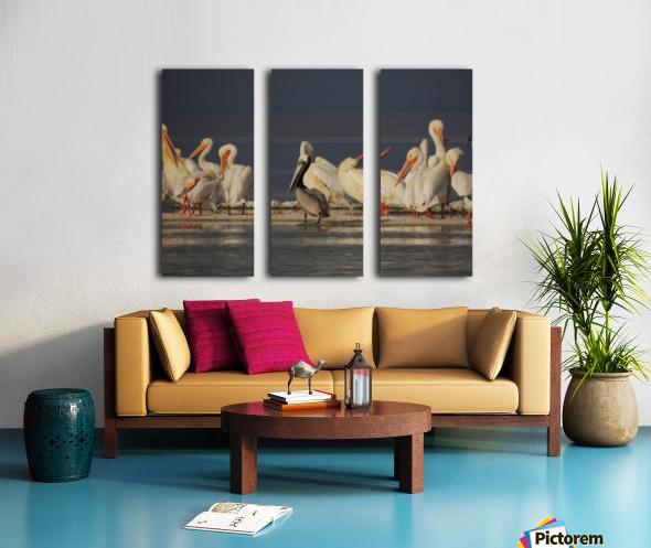 Pelicans at the Salton Sea Split Canvas print
