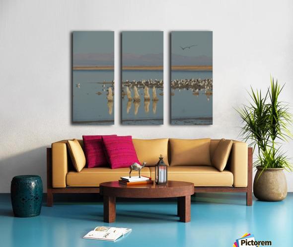 The Salton Sea Split Canvas print